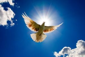 John 14: 16-18 – Father Gives Another Helper – The Holy Spirit